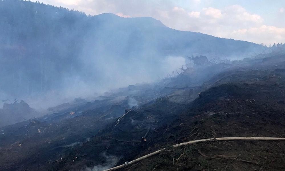 U Žlutic hoří tři hektary lesního porostu